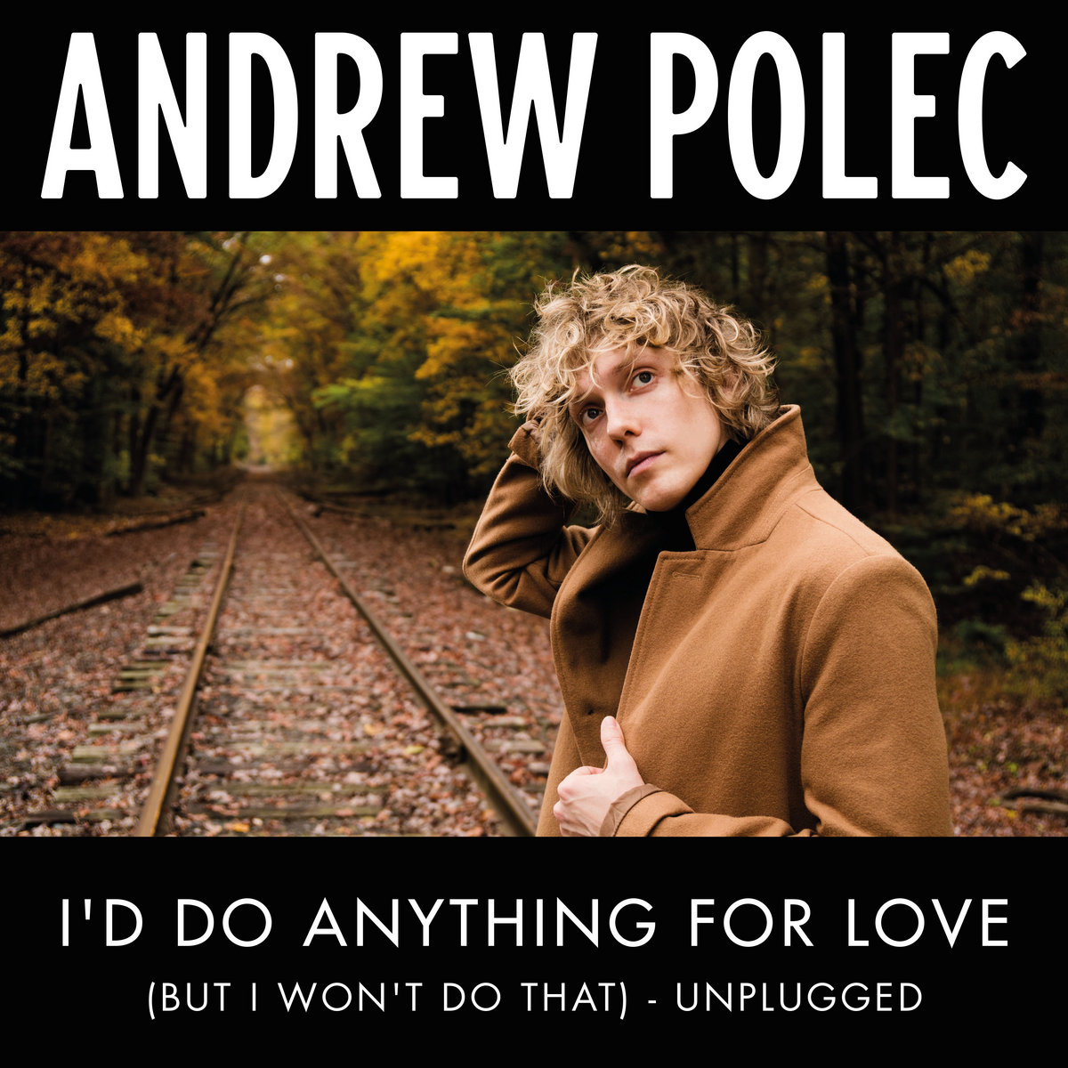Single cover : Andrew Polec - I'd Do Anything For Love (But I Won't Do That) - Unplugged